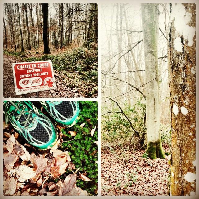 #Run (45mn de forêt, boue, chasseurs, paix intérieure)